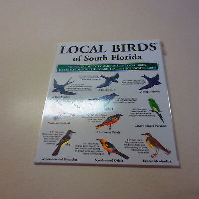 Local Birds of South Florida Quick-Guide to Commonly Seen Local Birds