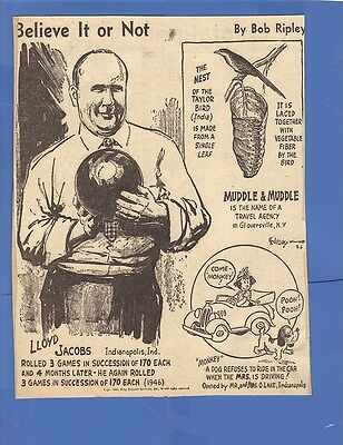 RIPLEY'S BELIEVE IT OR NOT CLIPPING 1946 LLOYD JACOBS BOWLING TAYLOR BIRD NEST