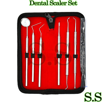Dental Scaler Pick Stainless Steel Tools With Inspection Mirror Set 6 Pcs Pr-255