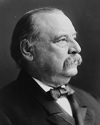 President Grover Cleveland U.S. 8 x 10 Photo Picture