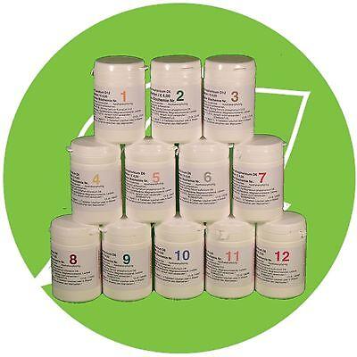 Schuessler Schüssler Salze (SCHÜSSLER SALZE SET 1 (1-12) 12 x 200 Tabletten glutenfrei  PZN 08000353)