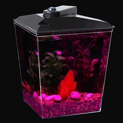 1-Gallon Aquarium with LED Light & Filter Betta Fish Tank Compact Starter Pack