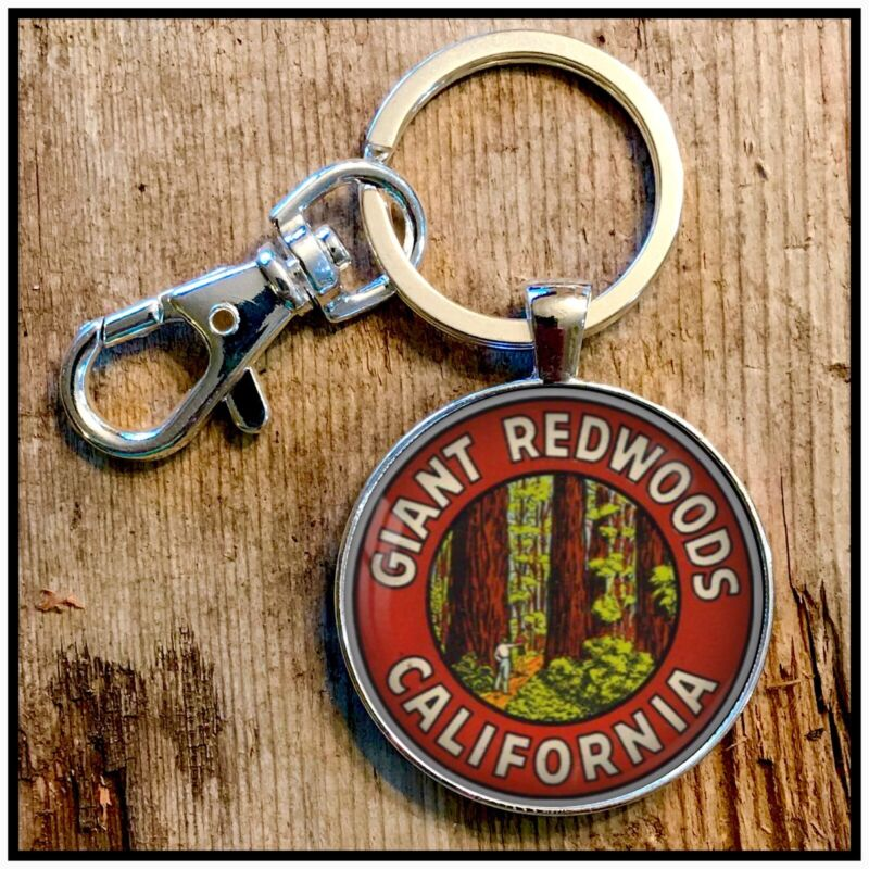 Vintage California Giant Redwoods Luggage Sticker Decal Photo Keychain Gift
