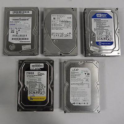 """LOT OF 5 - Mixed 250GB 3.5"""" SATA Desktop Hard Disk Drives - HDD - TESTED"""