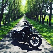 For sale 2014 Harley Davidson iron 883 Warrnambool Warrnambool City Preview