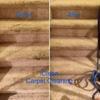 DEEP CARPET STEAM CLEANING starting at $70