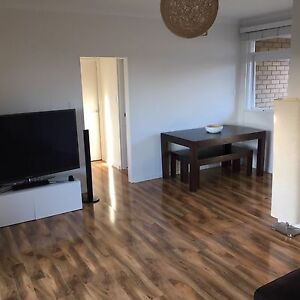 Homely apartment close to Eastern beaches Randwick Eastern Suburbs Preview