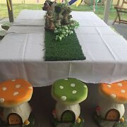 Fairy party Ingleburn Campbelltown Area Preview