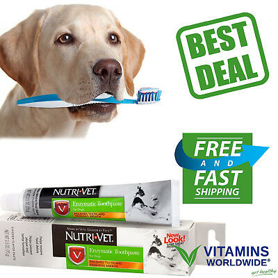 ENZYMATIC CHICKEN FLAVORED Canine Toothpaste Dog Teeth Care NUTRI-VET 2.5 Ounce
