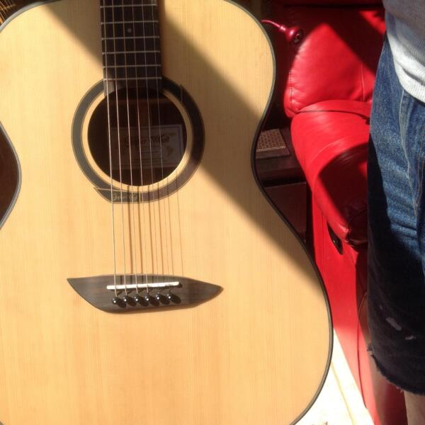 gopher wood guitar price 1
