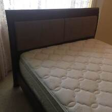 Timber Queen Bed Port Macquarie Port Macquarie City Preview