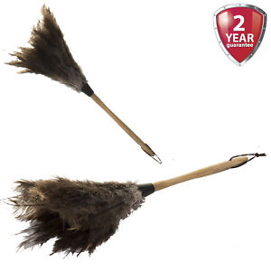 Ostrich Feather Duster Brush Wooden Handle Anti Static Natural Magic Cleaning