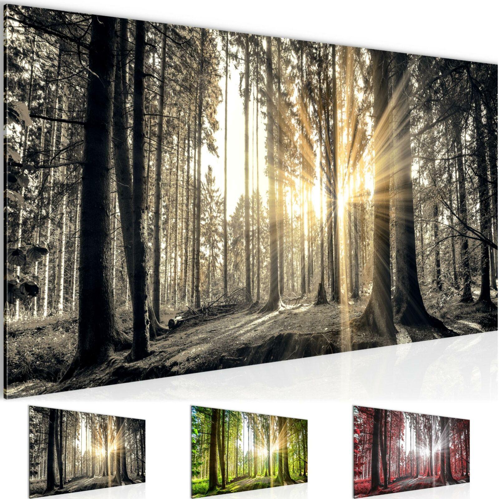 WANDBILDER Wald Landschaft VLIES LEINWAND BILD - XXL BILDER KUNSTDRUCK 503812P