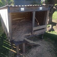 Laying Chicken and Coop Basin Pocket Ipswich City Preview
