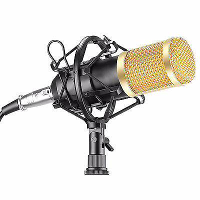 Microfono de Estudio Profesional para Youtube o Karaoke con Espuma y Araña...