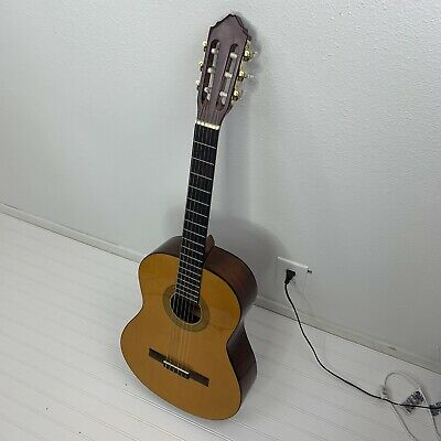 Lucero LC100S Solid-Top Classical Acoustic Guitar.