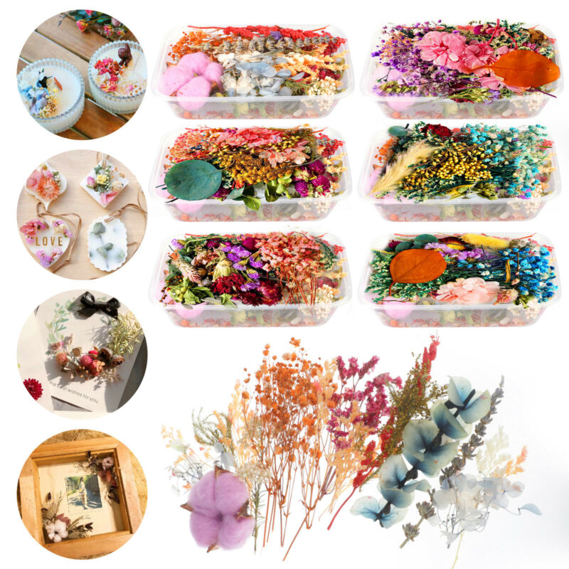 Mixed Dried Flowers DIY Specimen Plant Aromatherapy Candle Resin Making Craft US