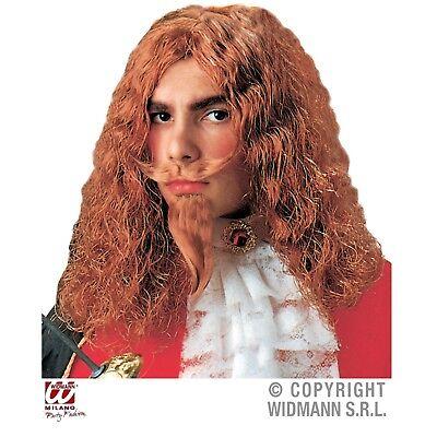 Musketier Edelmann Perücke mit Bart für Kinder Kostüm Zubehör Halloween Karneval