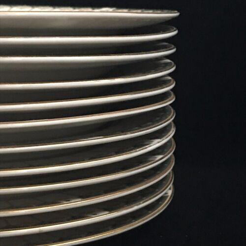 Lot of 12 Vintage Porcelain Farberware Ardsley Pattern Plates