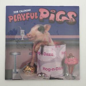 2018 Playful Pigs Mini Wall Calendar Funny Gift