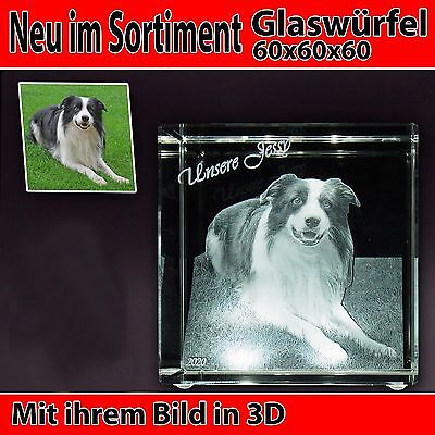 C60 Glas 3D Laser Foto Gravur Geschenkidee 2D in 3D Geburtstag Hund NEU Katze