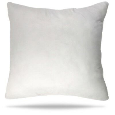 30x30 Pillow Insert Decorative Throw Pillow Insert Sham Couch Cushion 30 inch ()