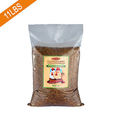 11LBS Bulk Dried Mealworms for Wild Birds Food Blue Bird Chickens Hen Treats