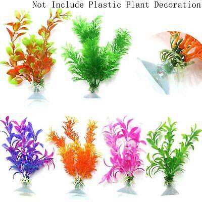 6 PCS Socket Suction Cup for Aquarium Plastic Plant Decoration
