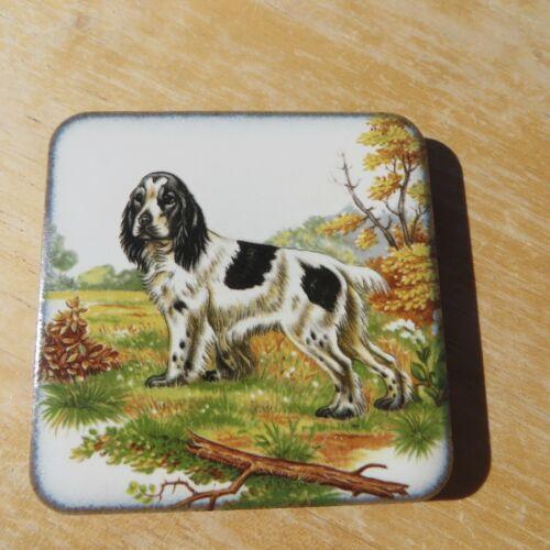 Springer Spaniel Square Ceramic Tile Magnet