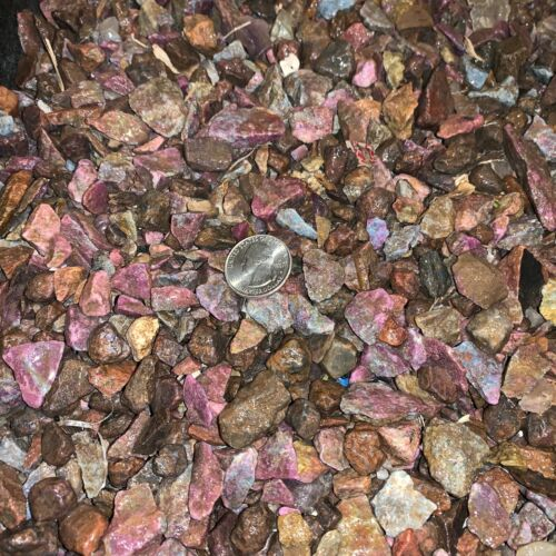 3000 Carat Lots of SMALL Ruby/Sapphire Rough - Plus a FREE Faceted Gemstone