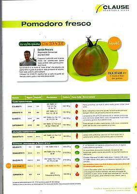 "Seeds Tomato /"" Hellfrucht /"" Platzfest Very Productive Rispentomate"