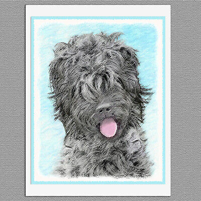 6 Black Russian Terrier Dog Blank Art Note Greeting - Black Russian Terrier Dogs