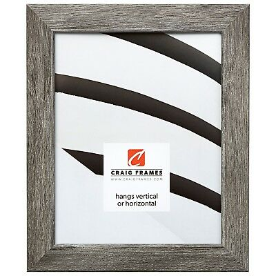 Craig Frames Gray Barnwood Picture Frames & Poster Frames, 1.25