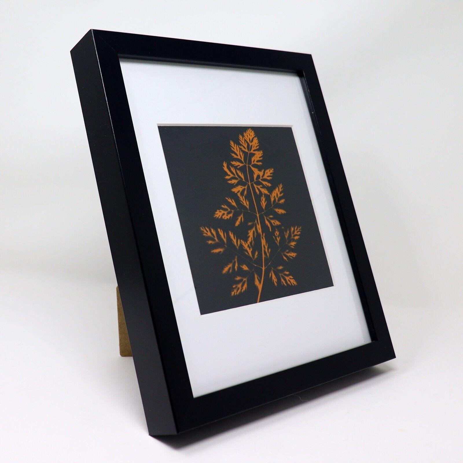Harvest Carrots In The Garden Cyanotype Print - $75.00