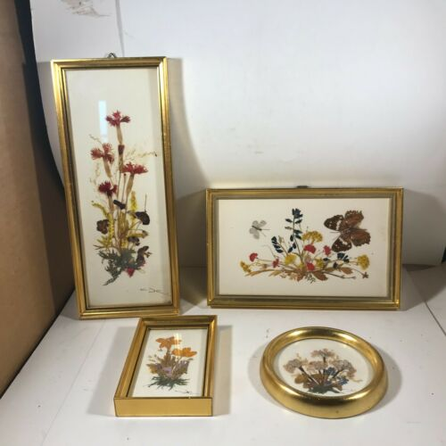 Set of 4 REICHLIN Framed Dried Flowers Wall Hanging