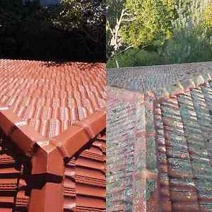 Roof painting Services Villawood Bankstown Area Preview
