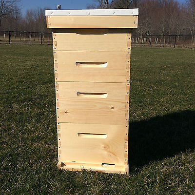 10 frame Beehive 2 Deep Brood Boxes,  2 Medium Honey Supers - Free shipping