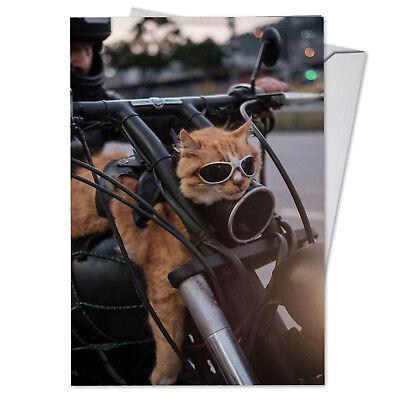 C3954BDG Funny Single Birthday Greeting Card: Cat Biker with Envelope  Biker Greeting Cards