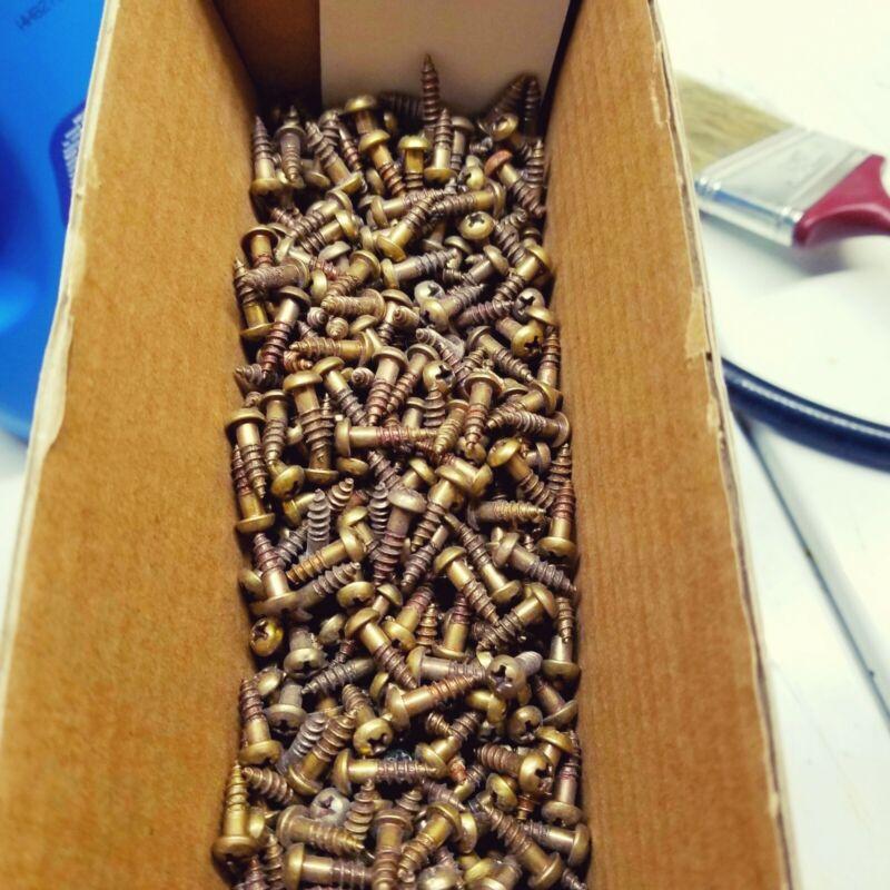 Lot of 500 Genuine Antique Brass Finish Wood Screws 500 vintage screws