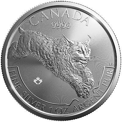 2017 $5 1oz Canadian Silver Lynx Coin .9999 Fine BU
