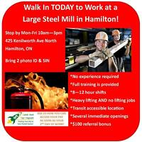 WALK IN TODAY TO WORK IN HAMILTON'S STEEL MILL!