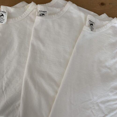 Patagonia Beneficial Ts Organic Cotton Blank White