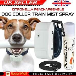 Rechargeable Citronella Dog Collar Anti No Bark Train Mist Stop Barking Spray UK
