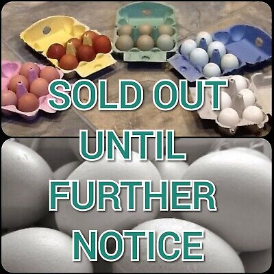 SOLD OUT 30x GREY 1/2 Doz (Lengthways Opening) Cardboard Egg Boxes