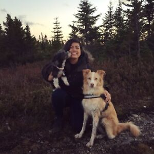 Experienced Pet Sitter (Insured)