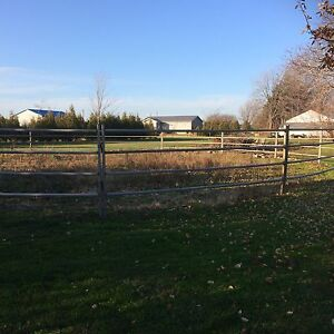 Round pen for sale London Ontario image 1