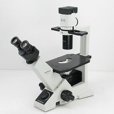 Olympus Ckx31 Inverted Phase Contrast Microscope W 10x Objective 10x Eyepieces