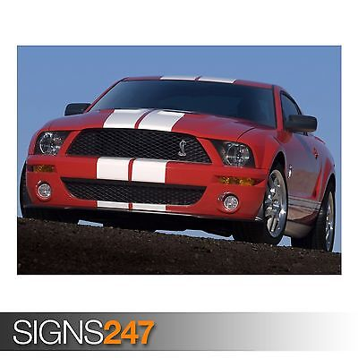 (2007 FORD SHELBY GT500 (AC910) CAR POSTER - Photo Poster Print Art * All Sizes)