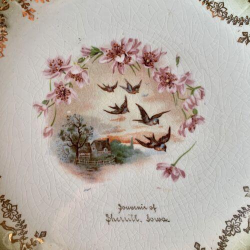 Vintage PRAIRIE ROSE COTTAGE Collectible Souvenir China Plate SHERRILL Iowa