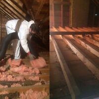 Hassle Free Insulation Removal